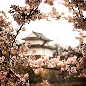 osaka-castle-park-japan